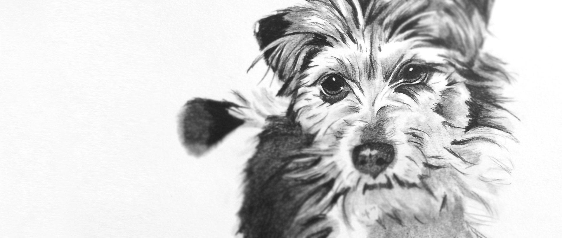 Tierfoto zeichnen lassen