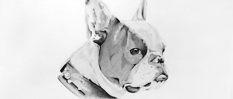 Tierportrait Hundezeichnung